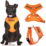 No Dogs Orange Not Good With Other Dogs Color Coded Alert Warning Waterproof Padded Adjustable Non Pull Front and Back Ring Medium Vest Dog Harness Prevents Accidents By Warning Others of Your Dog in Advance