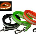 New Glow In the Dark Dog and Cat Safety Leash Lead, Durable Strong TPU Leash, Suitable for Small Medium and Large Cats or Dogs, Color Orange, By Downtown Pet Supply