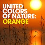 United Colors of Nature: Orange (Relaxing Spa Sounds for Massage, Wellness and Serenity)