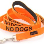 NO DOGS Orange Color Coded 2 4 6 Foot Padded Dog Leash (Not Good With Other Dogs) PREVENTS Accidents By Warning Others of Your Dog in Advance (6 Foot Leash)