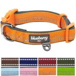 Blueberry Pet 8 Colors Soft & Comfy 3M Reflective Pastel Color Padded Dog Collar, Baby Orange, Medium, Neck 14.5″-20″, Adjustable Collars for Dogs