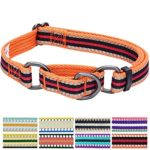 Blueberry Pet 8 Colors 3M Reflective Multi-colored Stripe Safety Training Martingale Dog Collar, Orange and Black, Small, Heavy Duty Adjustable Collars for Dogs